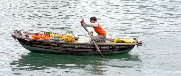 fruit seller halong bay